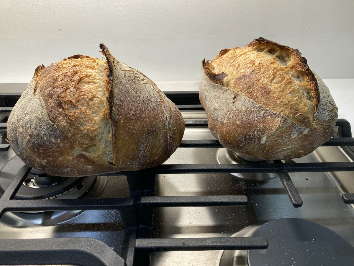 two loaves of sourdough bread with nice brown crust on a stove top