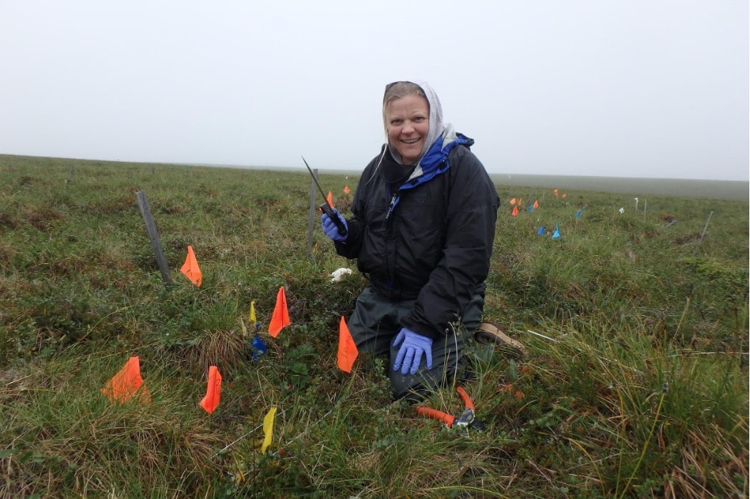 Educator Svea Anderson in the field with yellow flag markers