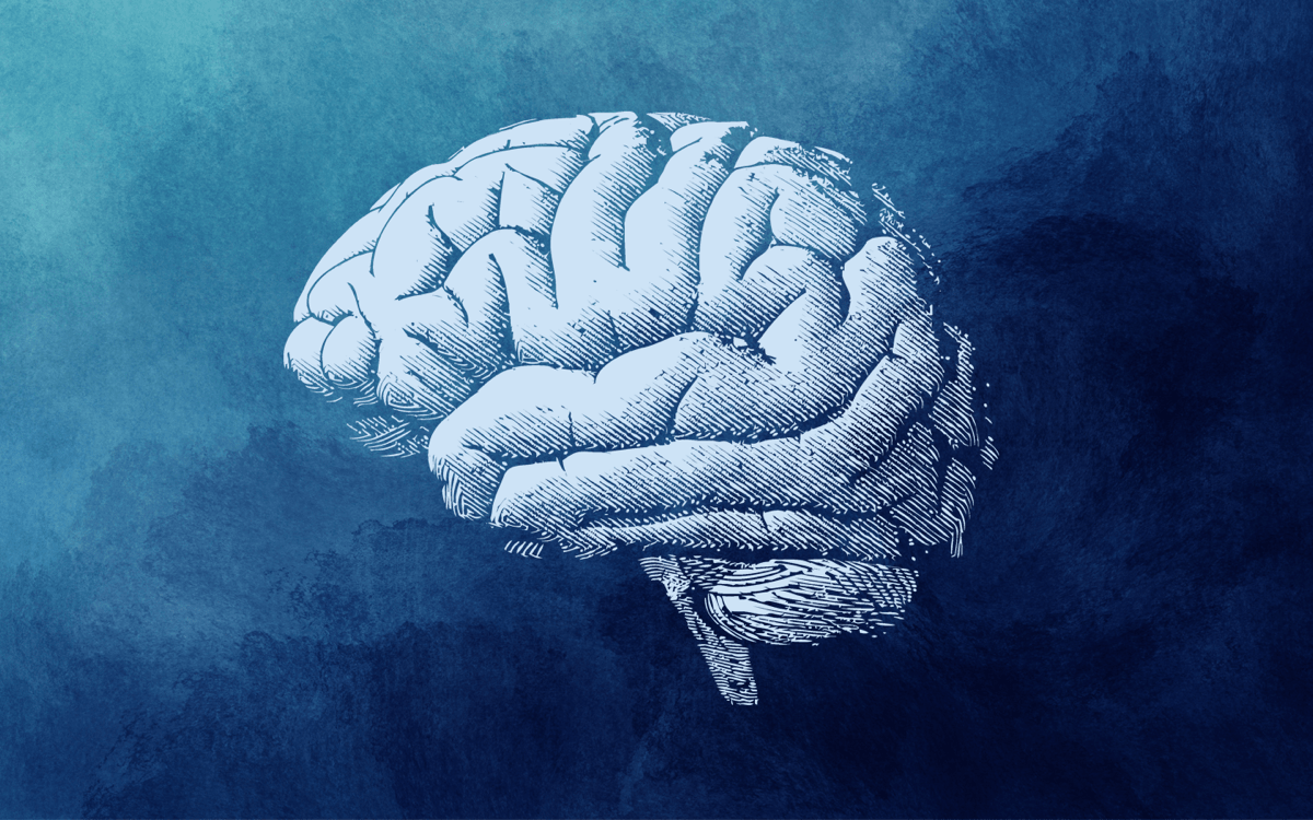 a graphic of a white brain on a blue watercolor background