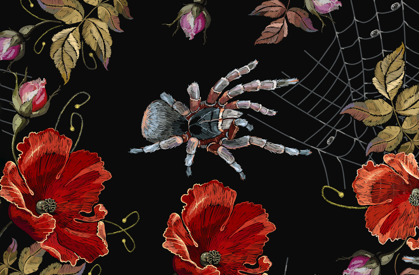 an illustration of a spider surrounded by different types of flowers